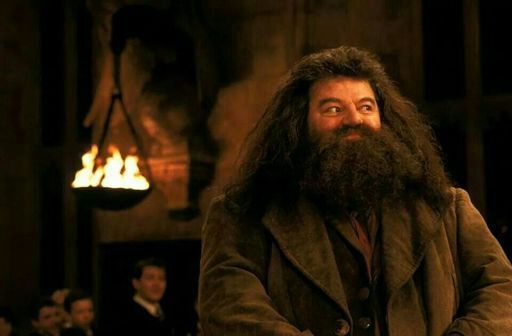 Image result for happy hagrid