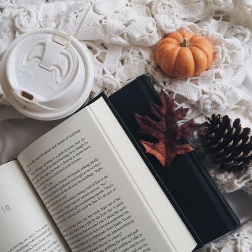Fall Leaves Wallpaper Macbook Book School Aesthetic Aesthetic Ception Amino