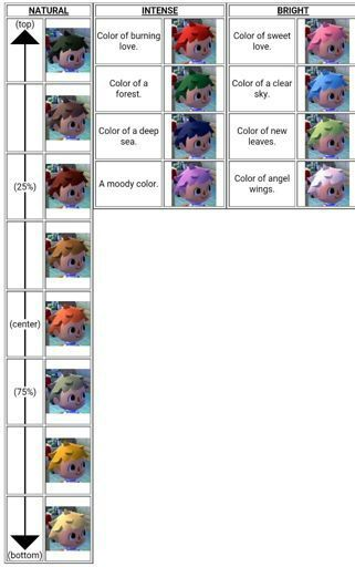 Acnl Shampoodle Hair Guide : shampoodle, guide, Character, Customization, Guide, Animal, Crossing, Amino