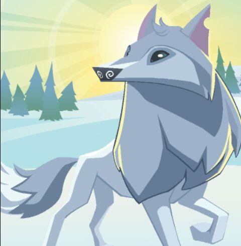 Image of: Paigeeworld Ctrademe The Arctic Wolf Aj Amino Amino