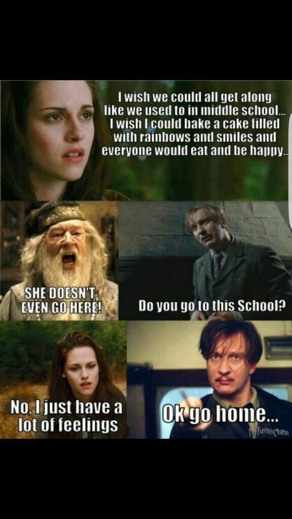 HARRY POTTER ULTRA FUNNY MEMES Harry Potter Amino