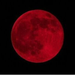 Red Aesthetic Wiki Kids on The Moon Amino