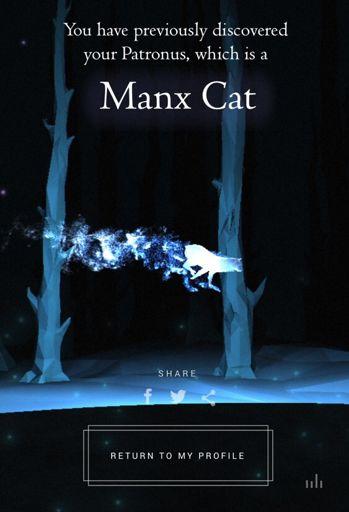 Manx Cat Patronus : patronus, Harry, Potter, Amino