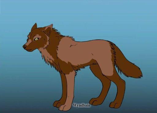 amora wiki wolf amino