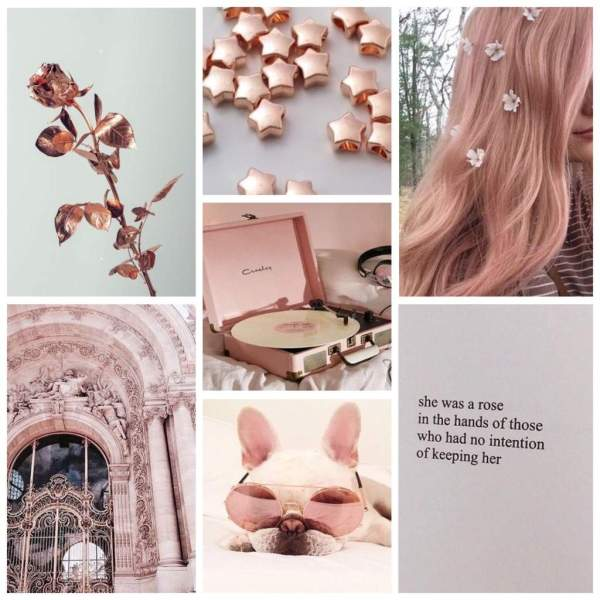 Moodboards And Aesthetics - Year of Clean Water