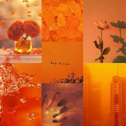 Orange Aesthetic Wiki Aesthetic Universe Amino