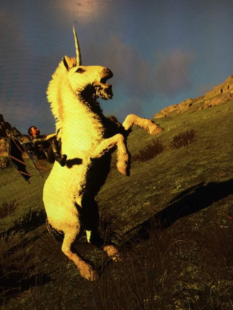 Ark Unicorn Taming : unicorn, taming, Tamed, First, Unicorn!, Survival, Evolved, Amino