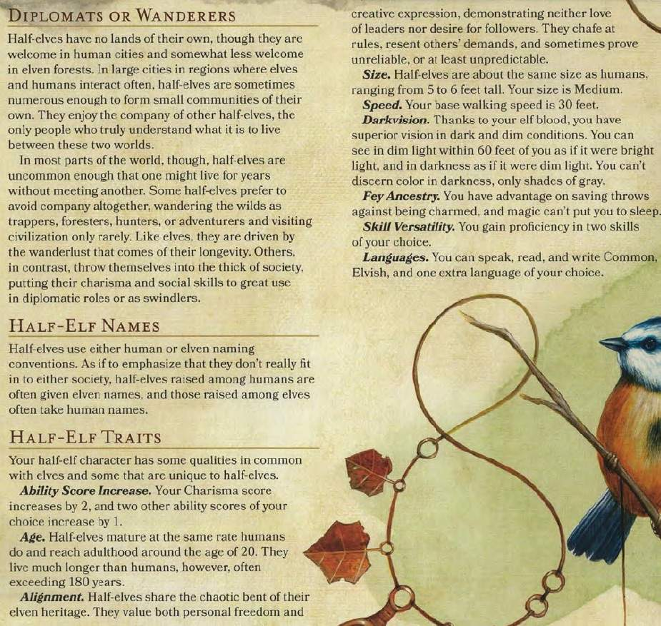 Half Elf Wiki Dungeons Dragons D D Amino
