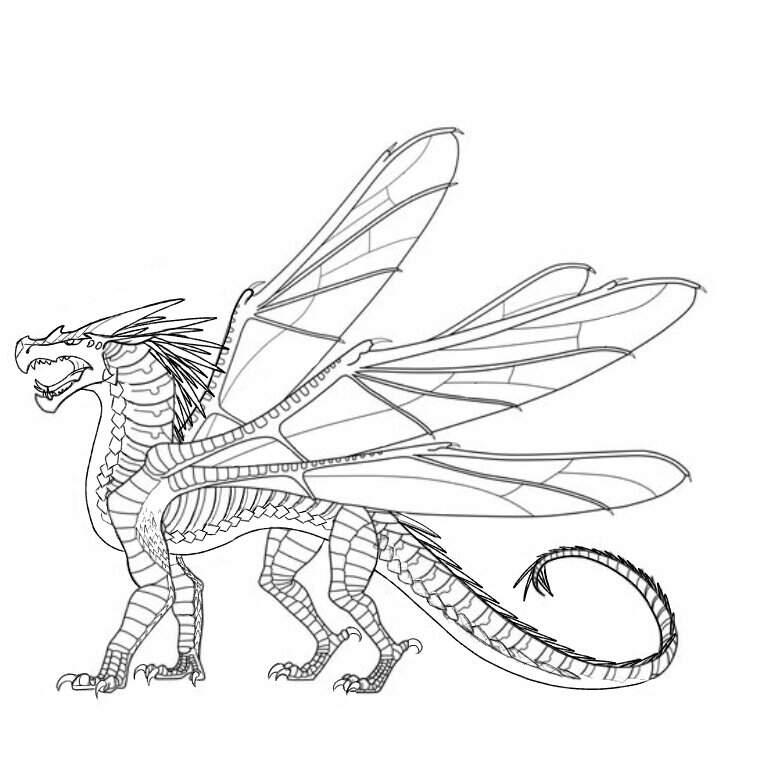 Wings Description