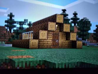I built a Minecraft starter house Minecraft Amino