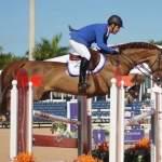 Showjumping Pics Equestrian Amino