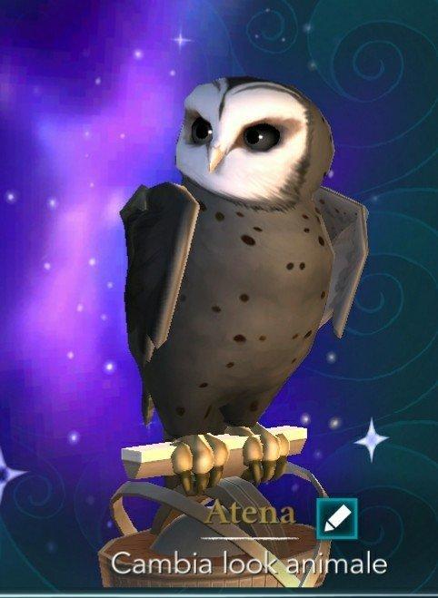 Hogwarts Mystery Owls : hogwarts, mystery, Recreating, Hogwarts, Mystery, (owl), Amino