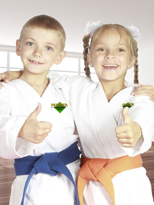 karate lessons for kids