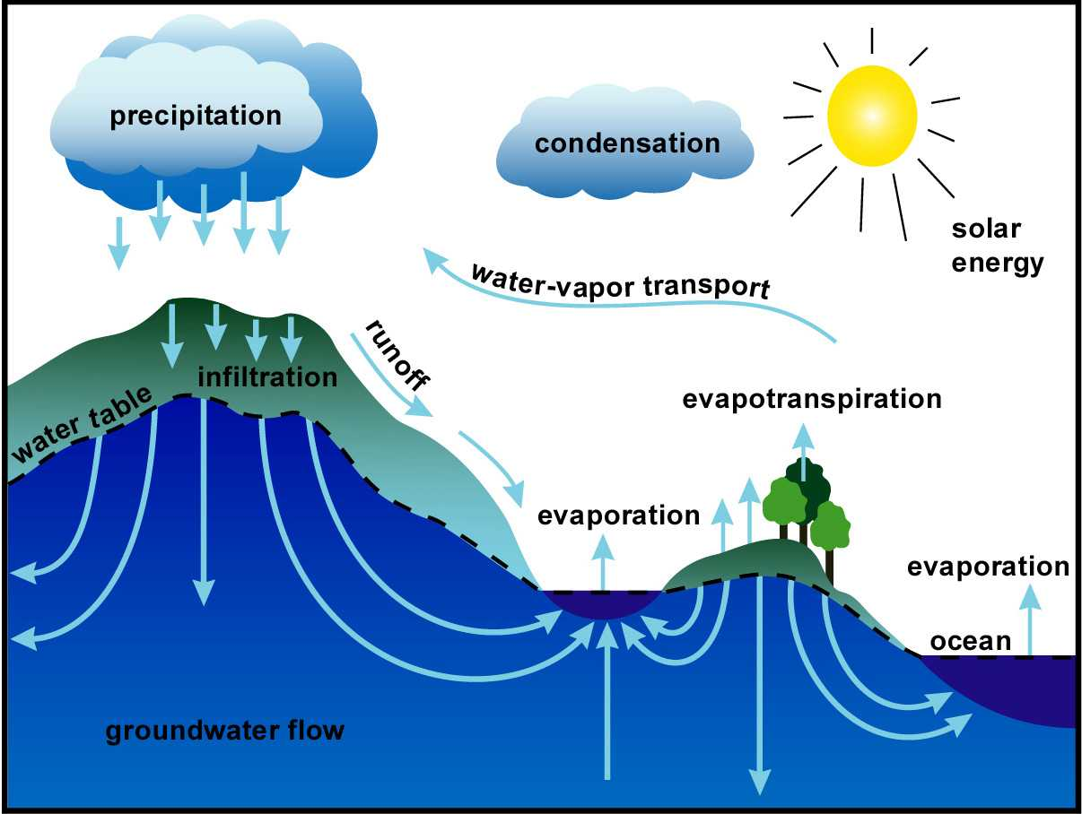 Water Cycle The Simplest Topic In Igcse Biology And Now