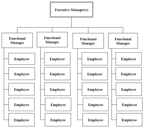Project Managers and Functional Organisational Structure