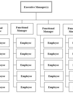 Functional organization structure an example also structures in project management hut rh pmhut