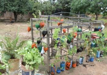 Más de 100 familias se beneficiarán con el proyecto de Huerto Ecológicos Comunales