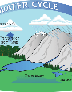 Diagram of the water cycle showing evaporation condensation and precipitation also education rh pmmsa