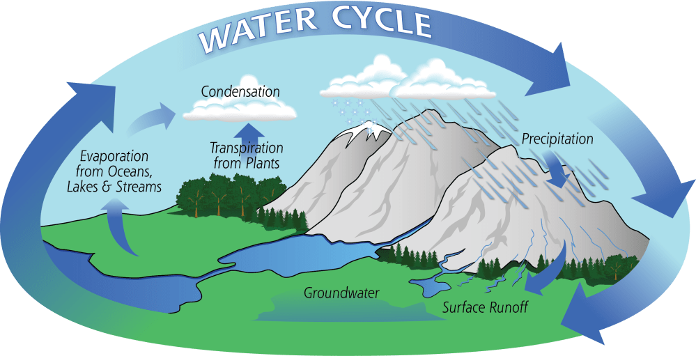 medium resolution of diagram of the water cycle showing evaporation condensation and precipitation