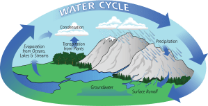 The Water Cycle | Precipitation Education