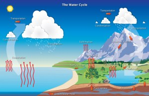 Hydrologic Cycle | Precipitation Education