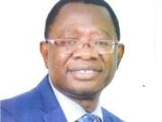...Professor Ayobami Salami...