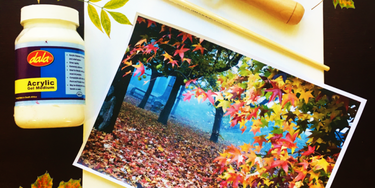 Diy A Uniquely Beautiful Canvas Using Only Pna Products