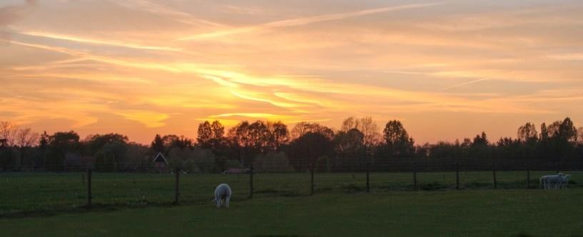 Sunset Miste7_2_klein