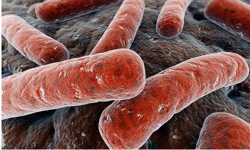 Можно ли вылечить туберкулез легких полностью