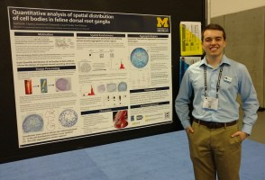 SfN16_Sperry