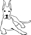 Simple Outline Drawn Drawing Dog Free Straight Dogs Lines