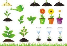 Free Vegetable Garden Clipart in AI SVG EPS or PSD