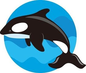 Free Killer Whale Clipart in AI SVG EPS or PSD