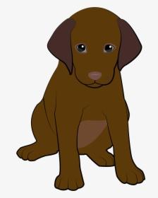 Chocolate Lab Cartoon : chocolate, cartoon, Labrador, Transparent, Image, Chocolate, Puppy, Download, PNGitem