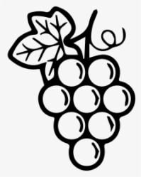 Black Grapes PNG Images Transparent Black Grapes Image Download PNGitem