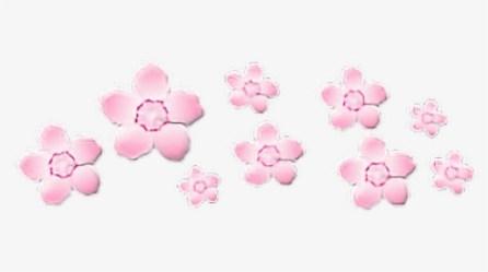 flower #crown #pink #soft #pinkaesthetic #transparent Pink Aesthetic Transparent Png Png Download Transparent Png Image PNGitem