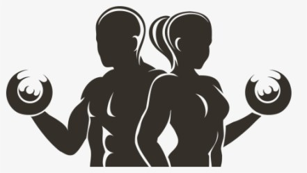 Physical Fitness Fitness Centre Physical Exercise Male Female Fitness Logo HD Png Download Transparent Png Image PNGitem