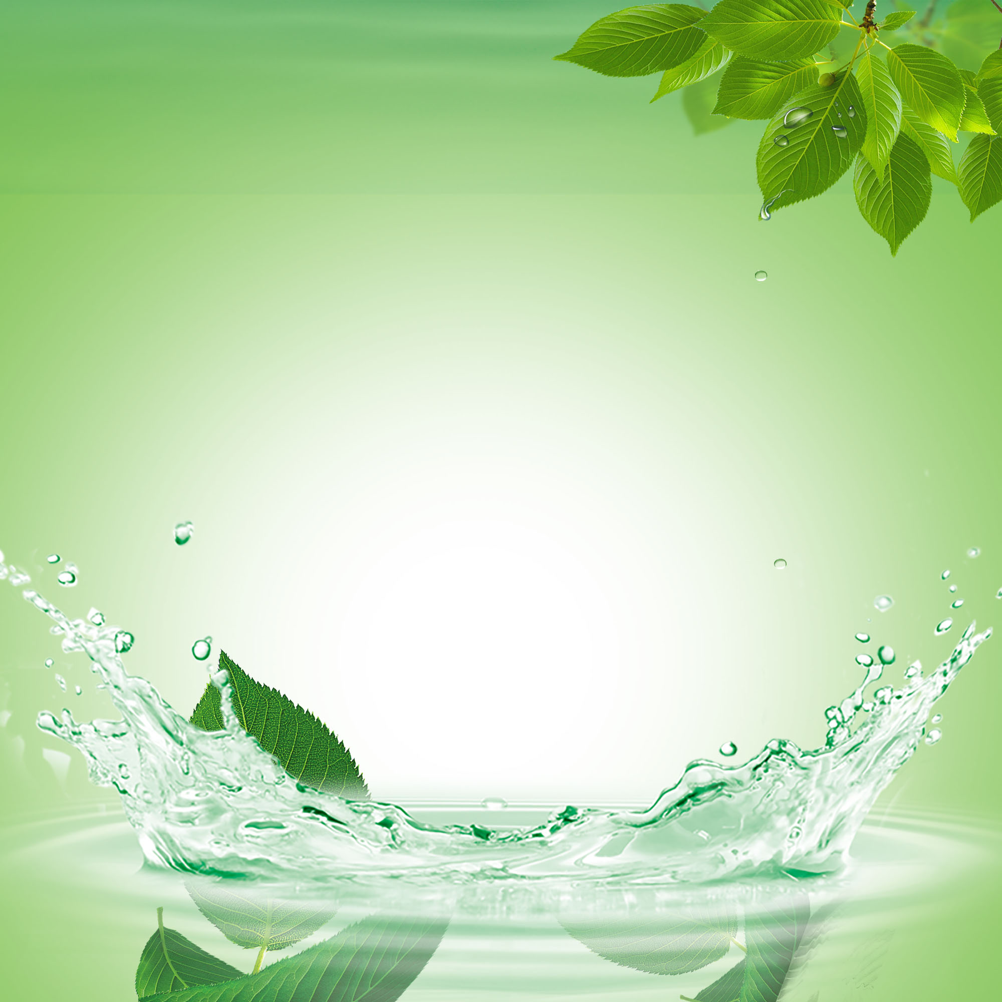 Fall Of The Leafe Wallpaper Fresh Water Drops Splash Poster Green Background Green