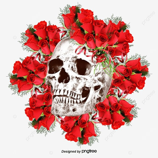 Frida Kahlo Wallpaper Iphone Vector Flowers Skull Skull Vector Red Flowers Flowers