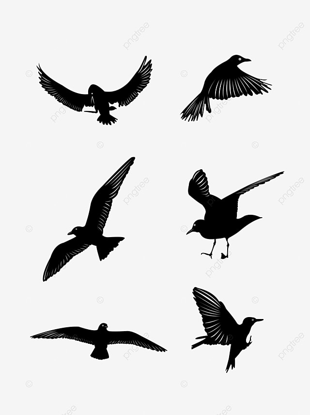 46 free vector flying