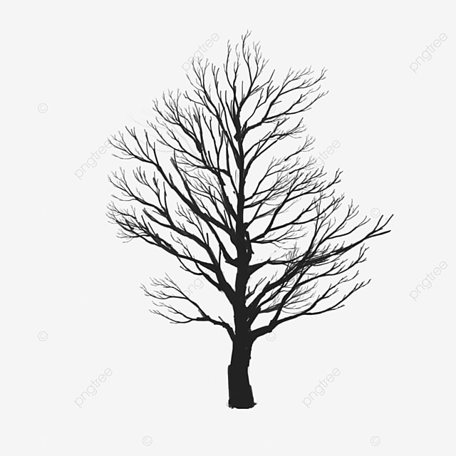 Tree Vector Clipart, Tree Clipart, Tree Png Vector PNG