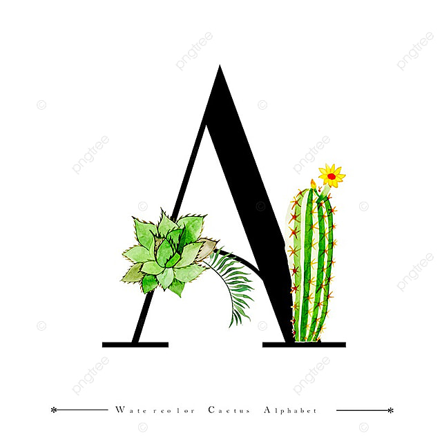 Alphabet Letter A With Watercolor Cactus And Leaves