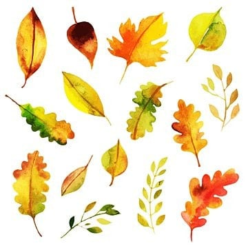 autumn png images download
