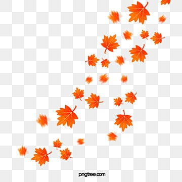 Maple Leaf PNG Images  Vector and PSD Files  Free
