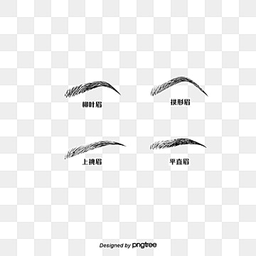 Eyebrows Png Vector PSD and Clipart With Transparent