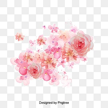 watercolor flowers png images