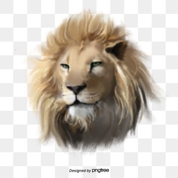 animals png images download