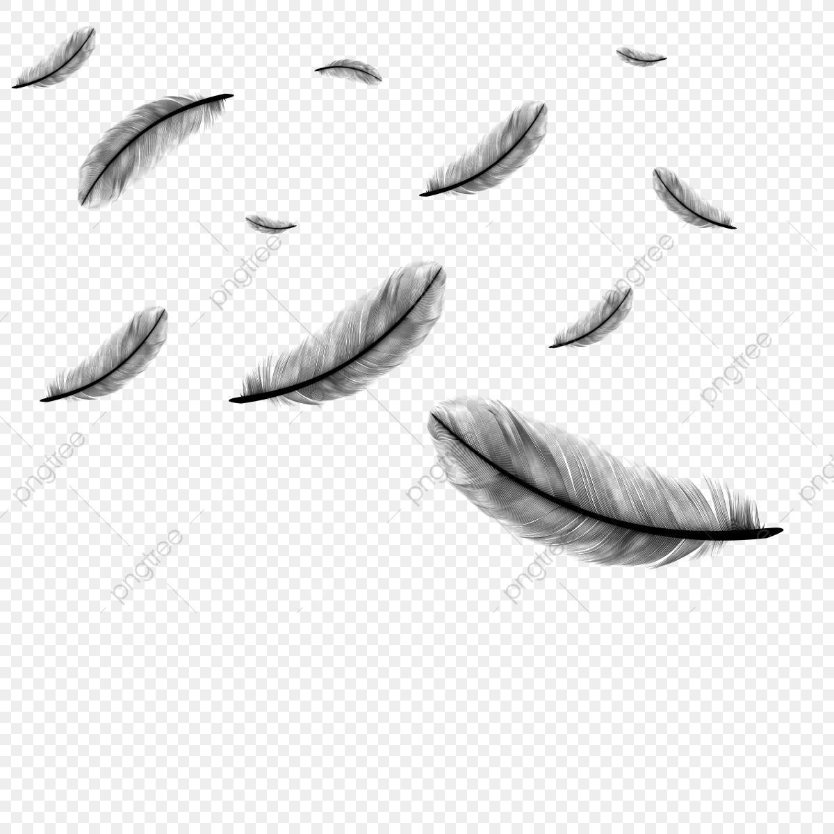 falling feather vector feather