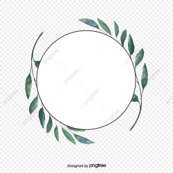 Green Eucalyptus Leaf Round Border Circular Hand Drawn Eucalyptus Leaves PNG Transparent Clipart Image and PSD File for Free Download