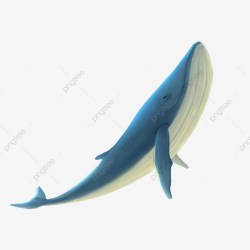 Blue Whale Png Vector PSD and Clipart With Transparent Background for Free Download Pngtree